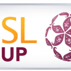 QSL Cup