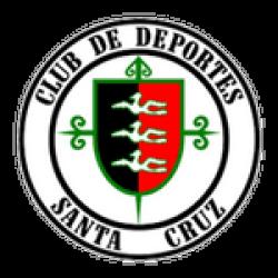 Deportes Santa Cruz