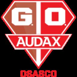 Gremio Osasco Audax